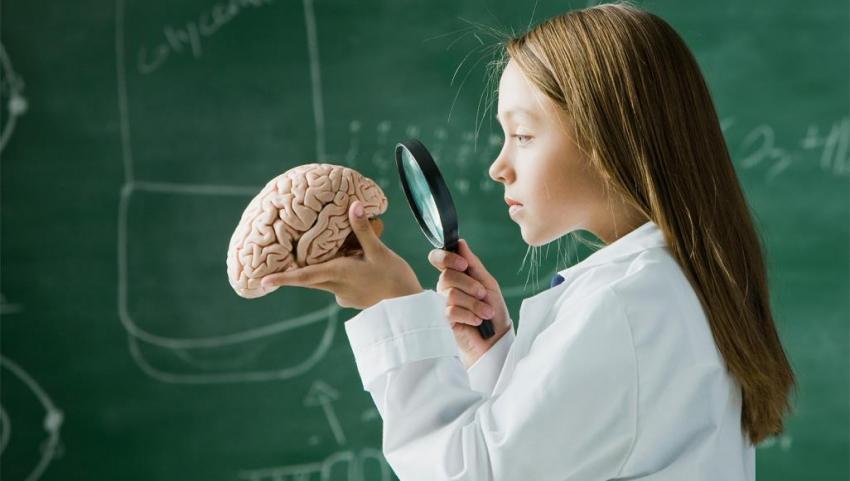 7 عادات خطيرة تهدد صحة الدماغ