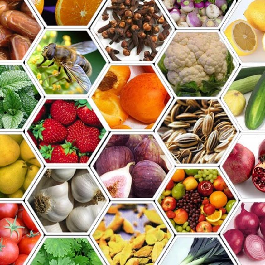 اكتشاف ثوري يمكننا من الاحتفاظ بالفواكه والخضراوات لايام